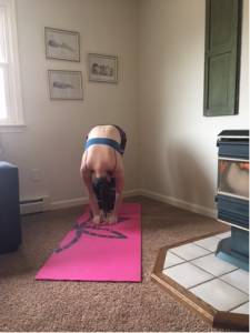 yoga for beginners  10 great poses to try today  life
